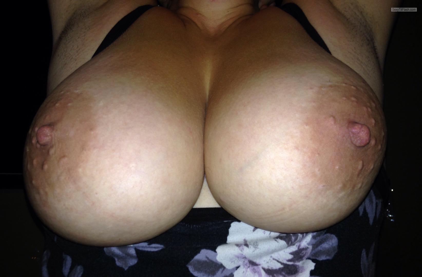 Tit Flash: My Very Big Tits - Bigtitsfuckya from United States